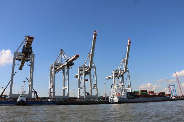 AT-AT Style im Hafen