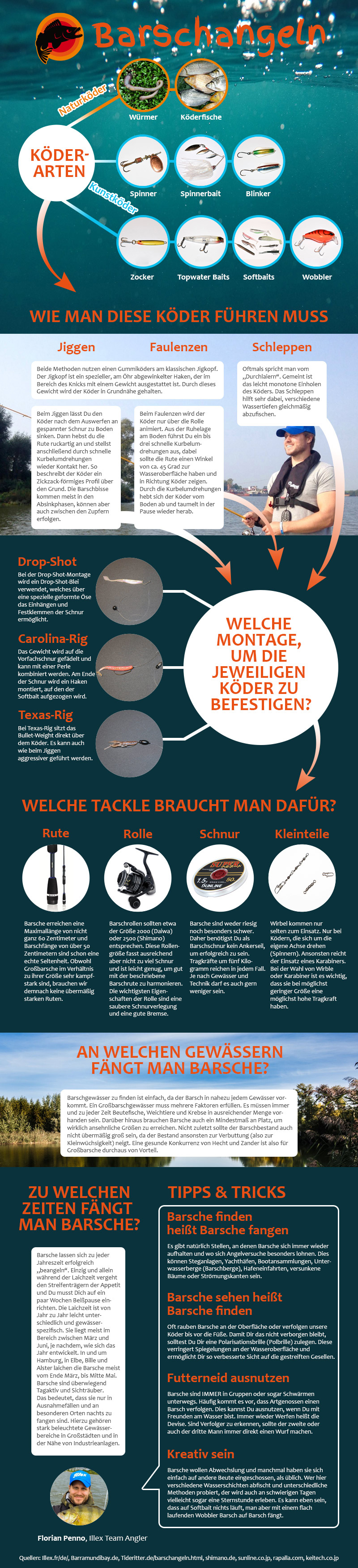 Infografik zum Barschangeln für Einsteiger